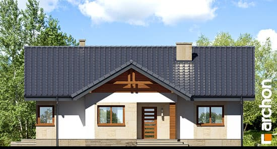 Дом в лещиновнике фасад 3