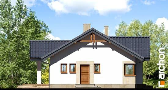 Дом в лещиновнике фасад 5