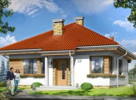 Дом Орлик фасад 1